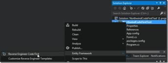 Visual FoxPro Entity Framework Provider v2-Getting Started